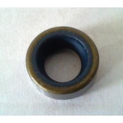 Seal DL 10X16X6 SM